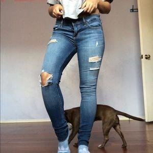 Hollister petite jeans